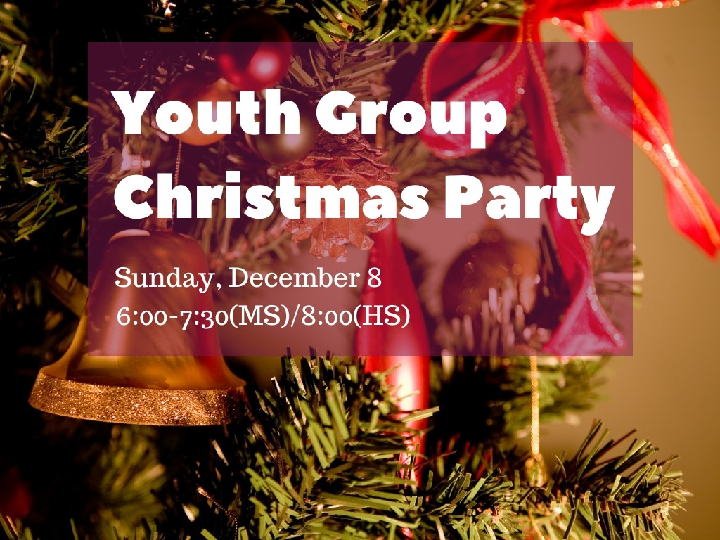 Youth Group Christmas Party